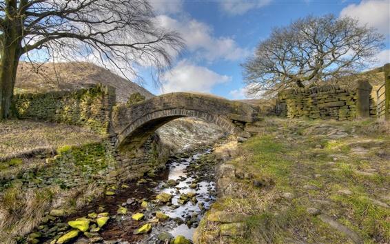 Wallpaper Bridge, river, grass, nature scenery