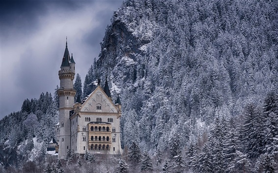 Wallpaper Castle, forest, winter, snow, Germany