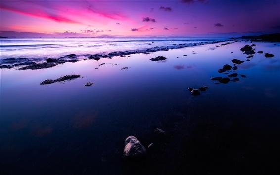 Обои Побережье, море, волны, рассвет