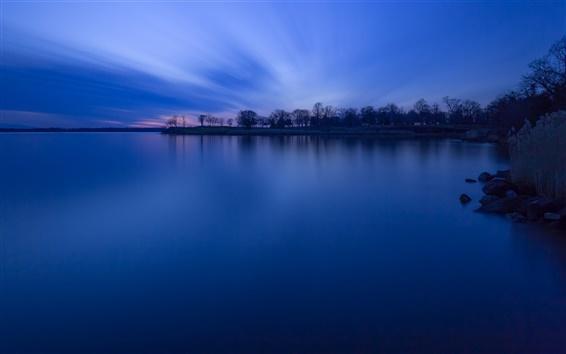 Fond d'écran Forêt, arbres, lac, crépuscule, bleu