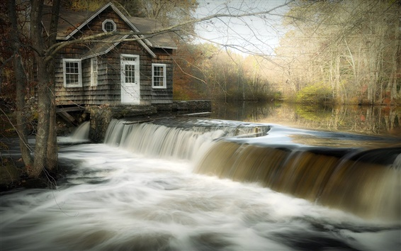 Wallpaper House, river, waterfall, trees