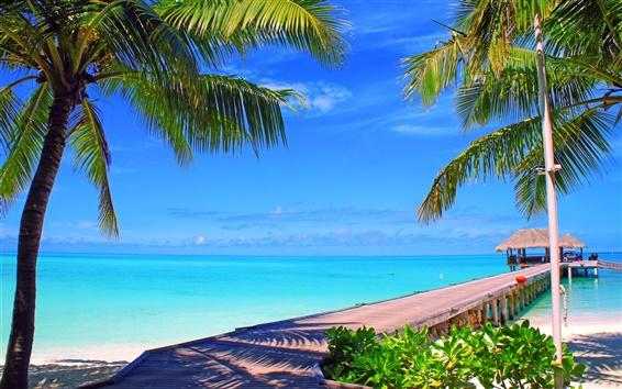 Fondos de pantalla Maldivas, isla, palmeras, puente, bungalows, mar, océano
