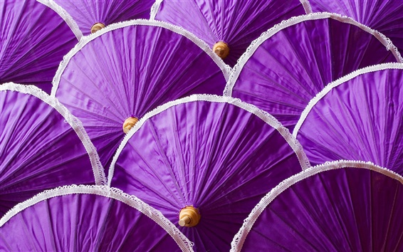 Wallpaper Many purple umbrella