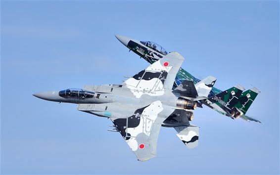 Wallpaper Mitsubishi F-15DJ fighters, flight, sky
