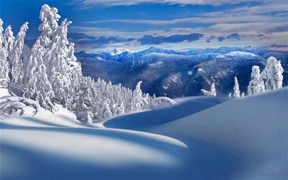 Fond d'écran Montagnes, arbres, neige, hiver, paysage de nature