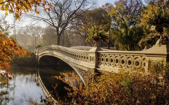 Fond d'écran Park, pont, arbres, automne