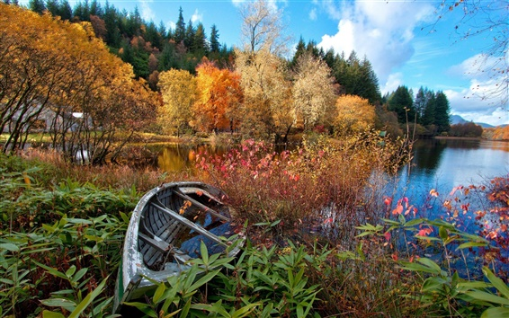 Wallpaper River, forest, autumn, trees, house, broken boat