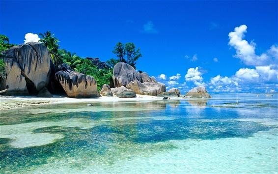 Wallpaper Tropics, sea, rocks, beach, palm trees, sky, clouds