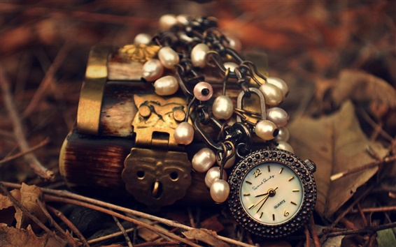 Wallpaper Watch, pendant, lock, leaves