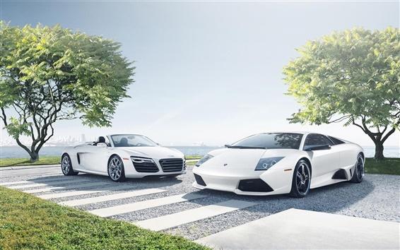 Обои Audi R8, Lamborghini LP640-4, белые суперкаров