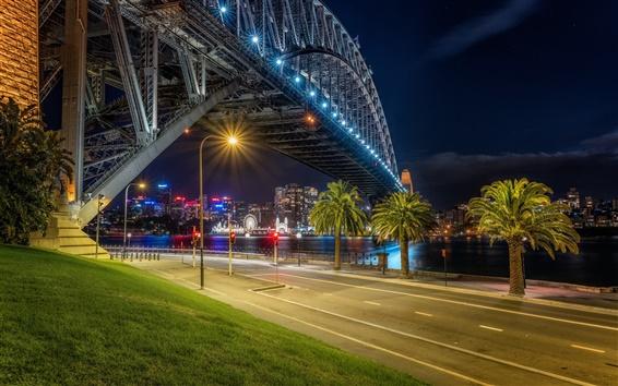Wallpaper Australia, Sydney, night, bridge, river, lights, palm trees