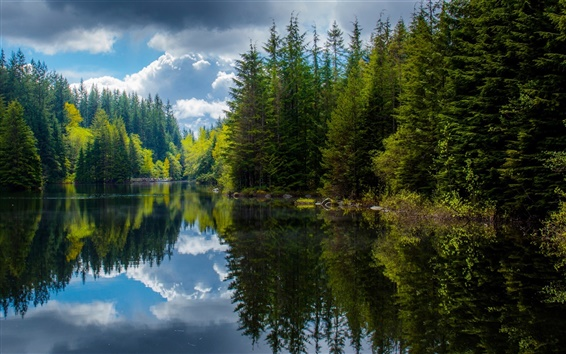 Wallpaper Canada, British Columbia, lake, trees, spring, reflection
