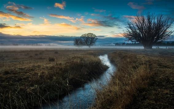 Обои Природа, деревья, поля, туман, поток, рассвет