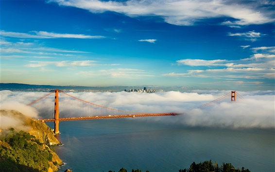 Wallpaper San Francisco, Golden Gate bridge, USA, bay, clouds, fog