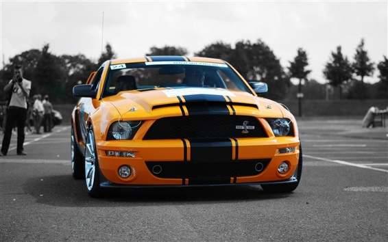 Wallpaper Shelby GT500 yellow car front view