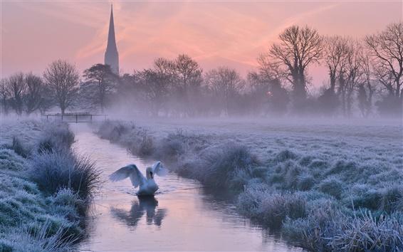 Fond d'écran Royaume-Uni, l'Angleterre, la cathédrale, l'hiver, le gel, la rivière, les arbres, cygne, crépuscule
