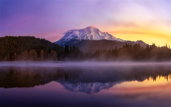 Wallpaper USA, California, mount Shasta, lake, morning, fog