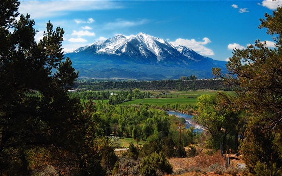 Wallpaper USA, Colorado, mountain, forest, trees
