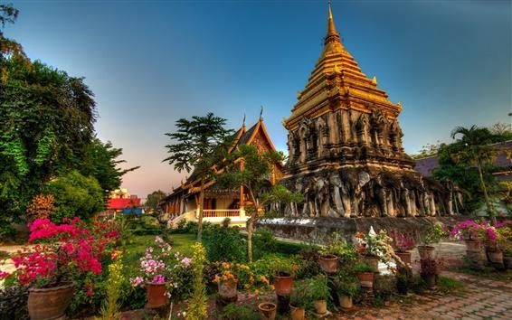 Wallpaper Wat Chiang Man, Thailand, flowers