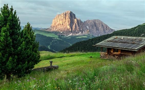 壁紙 木の家、山、木、草
