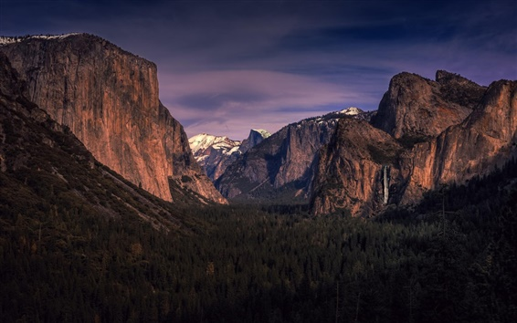 Wallpaper Yosemite National Park, California, USA, mountains, forest, trees, dusk