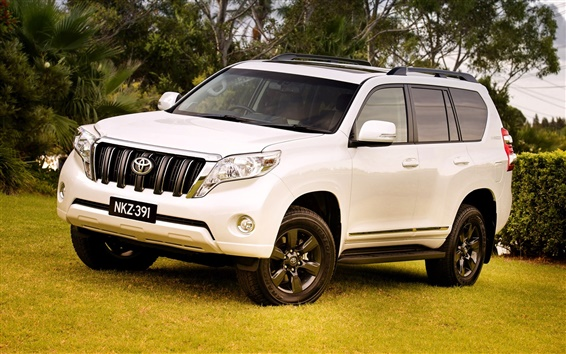 Wallpaper 2014 Toyota Land Cruiser Prado SUV car