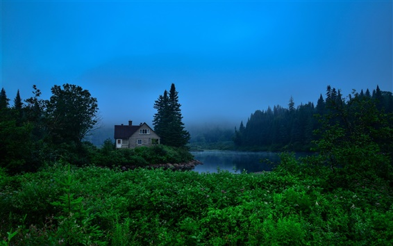 Wallpaper Canada, Jacques-Cartier Park, trees, house, river, fog, dawn