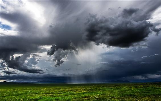 Обои Монголия, зеленые поля, темные облака, дождь