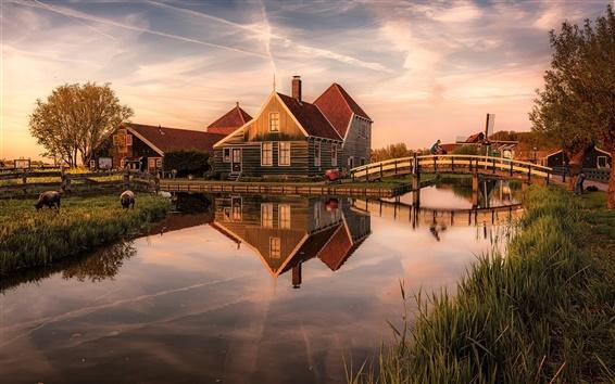 Fond d'écran Pays-Bas, maisons, rivière, pont, crépuscule