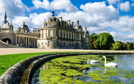 Wallpaper Pond, swan, palace, castle, clouds, trees