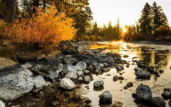 Fond d'écran Rivière, le matin, les arbres, les pierres, le lever du soleil