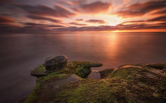 Wallpaper Sea, beach, stones, seaweed, morning, dawn, sunrise