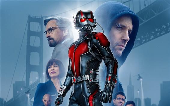Wallpaper Ant-Man 2015