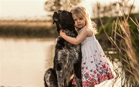 Обои Симпатичные девушки, собака, блики