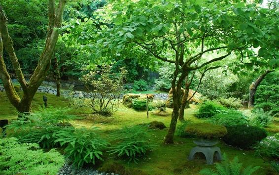 Wallpaper Garden, Canada, park, trees, green