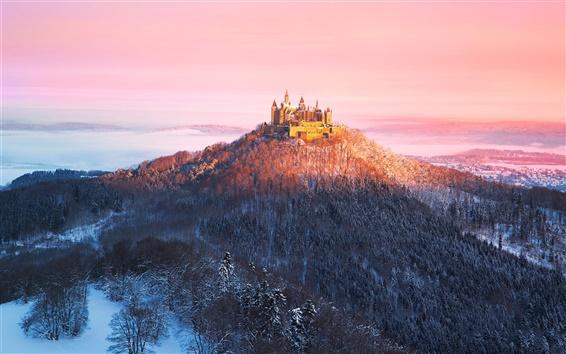 Fond d'écran Allemagne, château des Hohenzollern, le matin, les montagnes, les arbres, l'hiver, le soleil