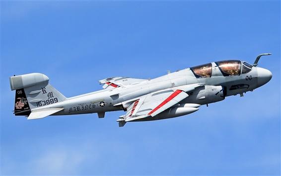 Fond d'écran Grumman EA-6B Prowler, avion, ciel
