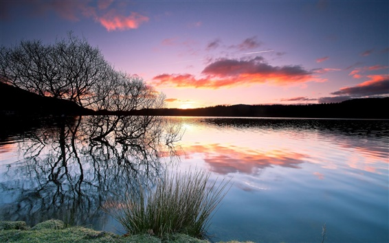 Wallpaper Lake, trees, silhouette, water reflection, sunset, evening