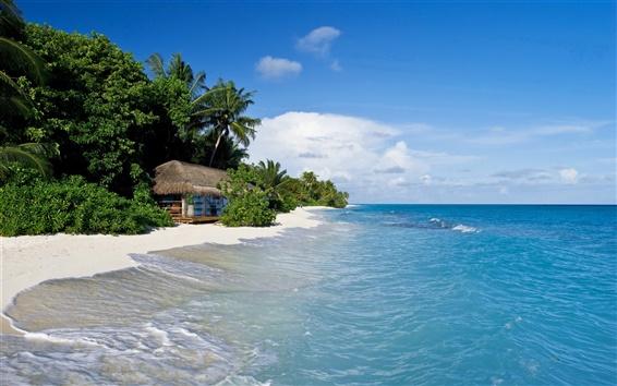 Wallpaper Maldives, tropical, sea, beach, palm trees, hut