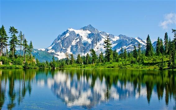 Обои Горы, снег, озеро, деревья, отражение воды