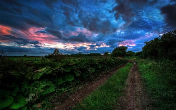 Wallpaper Nature landscape at evening, grass, road, field, dark blue clouds