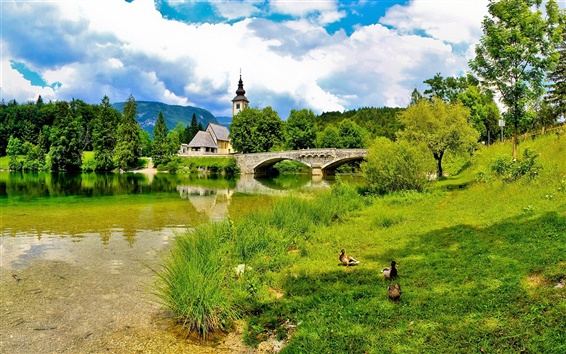 Wallpaper Slovenia, bridge, river, church, grass, summer, clouds