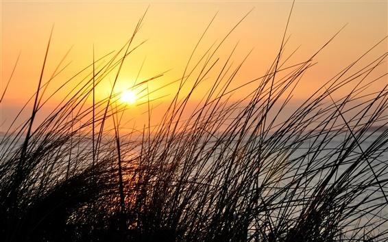 Wallpaper Sunset, grass, river