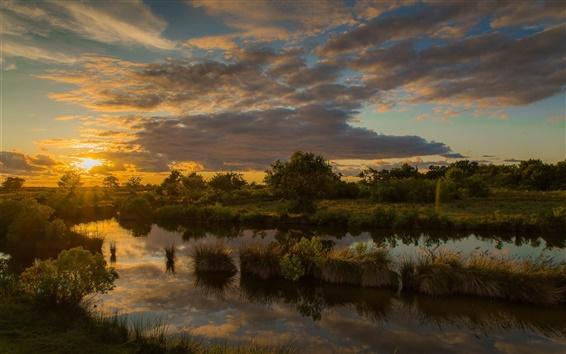 Wallpaper Trees, grass, lake, water reflection, sunset