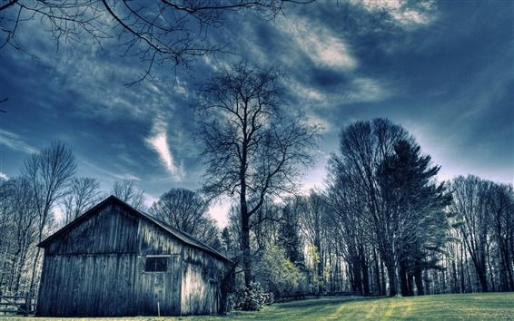 Wallpaper Wood house, trees, blue
