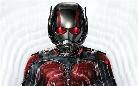Fondos de pantalla Ant-Man película 2015