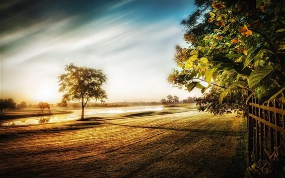 Wallpaper Morning light, trees, grass, fence, river, fog