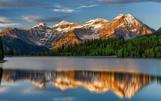 Обои Горы, озеро, деревья, отражение воды