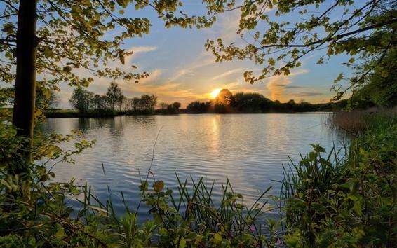 Wallpaper Sunset, pond, river, trees, evening