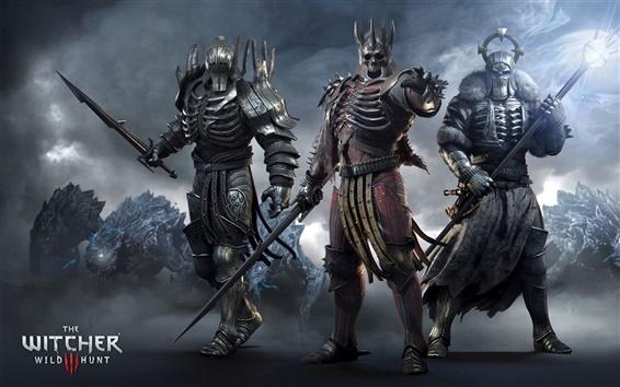 Fondos de pantalla The Witcher 3: Wild Hunt, juego HD
